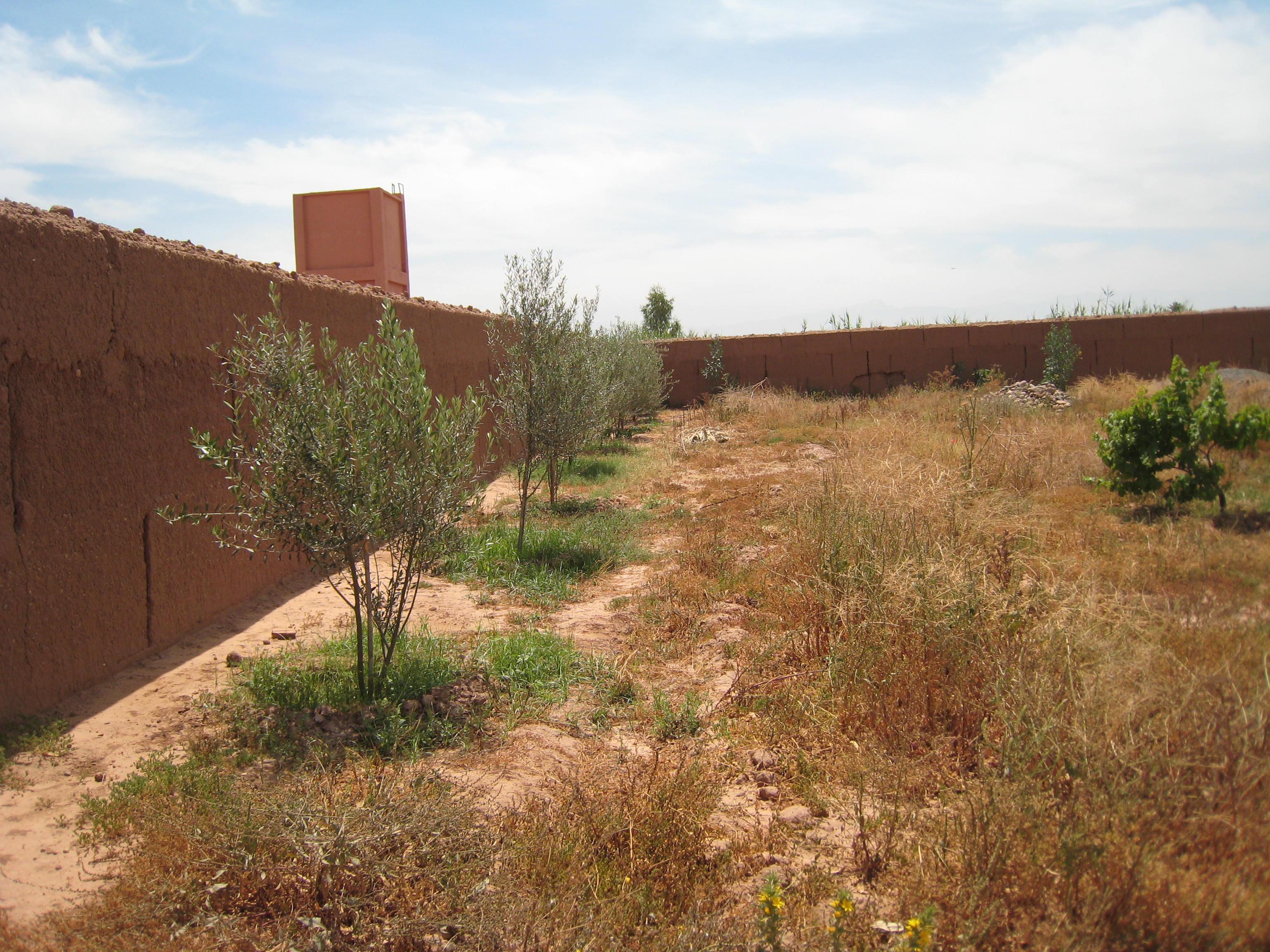 beau terrain pres demarrakech marrakech maroc. Black Bedroom Furniture Sets. Home Design Ideas